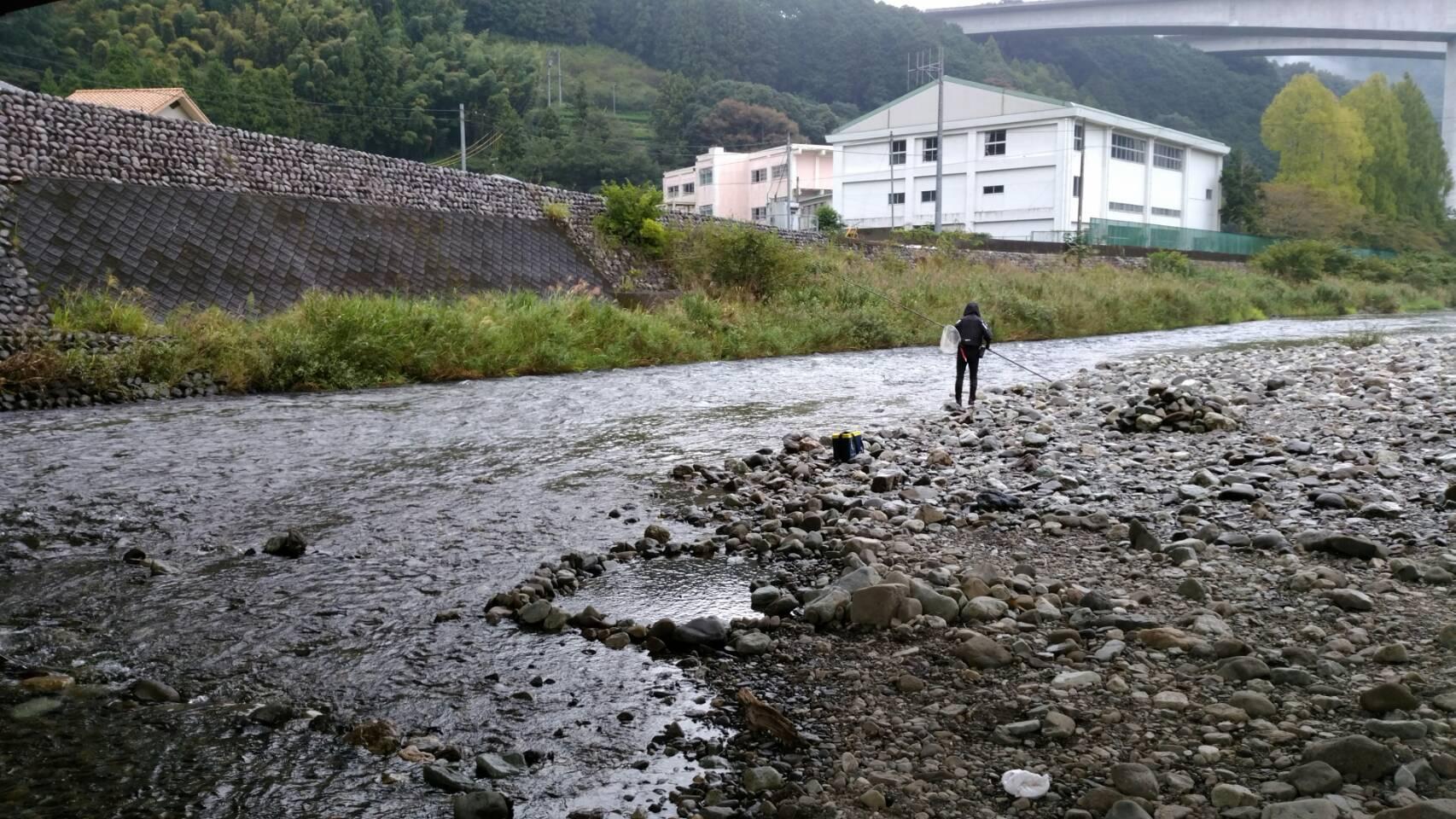 鮎終盤、静岡鮎河川