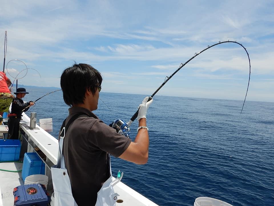 今期の石花海大鯛とイサキ