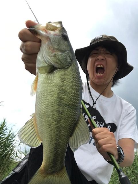 しばらく釣り行けてません・・・
