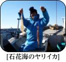 H29年1月のターゲット 船長さん・漁師さんに直接お聞きしました!!