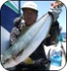 H29年6月のターゲット 船長さん・漁師さんに直接お聞きしました!!
