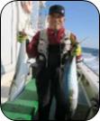 H29年12月のターゲット 船長さん・漁師さんに直接お聞きしました!!