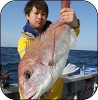 H31年4月の船釣りターゲット 船長さん・漁師さんに直接お聞きしました!!