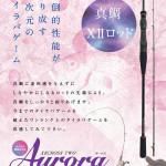 aurora_11