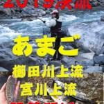2019渓流解禁間近
