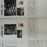 wp-image-1940710355jpeg.jpeg