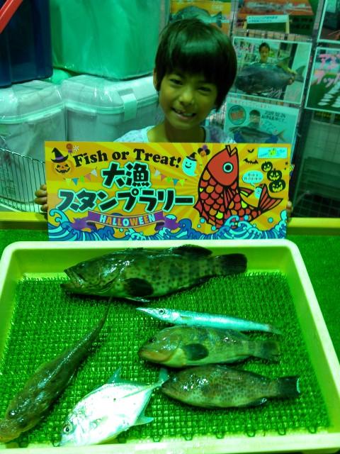 釣り名人ふみちゃん、○○○を釣る!