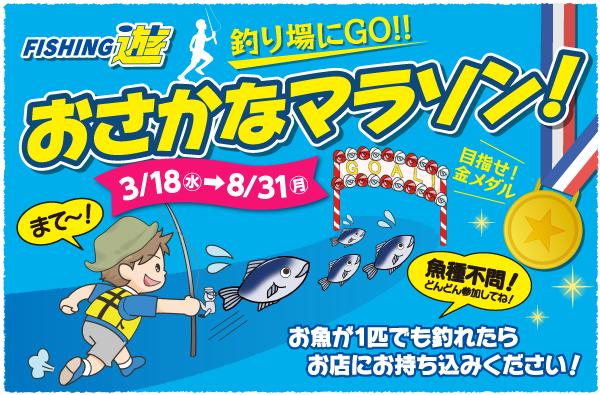2020年3月18日(水)~8月31日(月)まで「おさかなマラソン」開催!