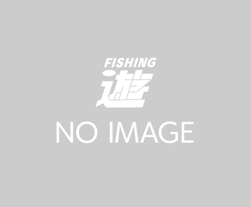長良川郡上にてアマゴの稚魚放流を行いました!