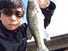 staff_noimg