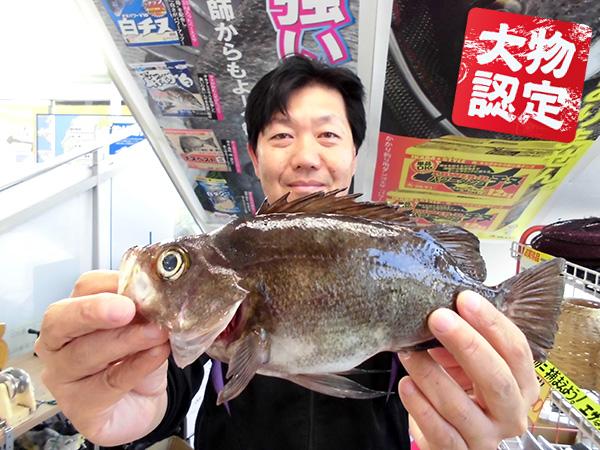 0327ooshima