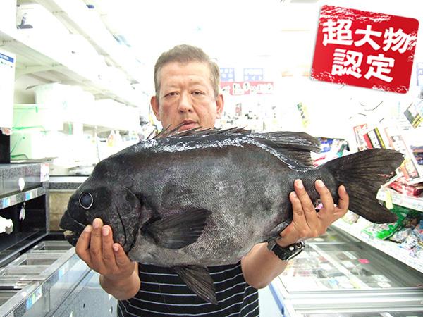 0611sugimoto