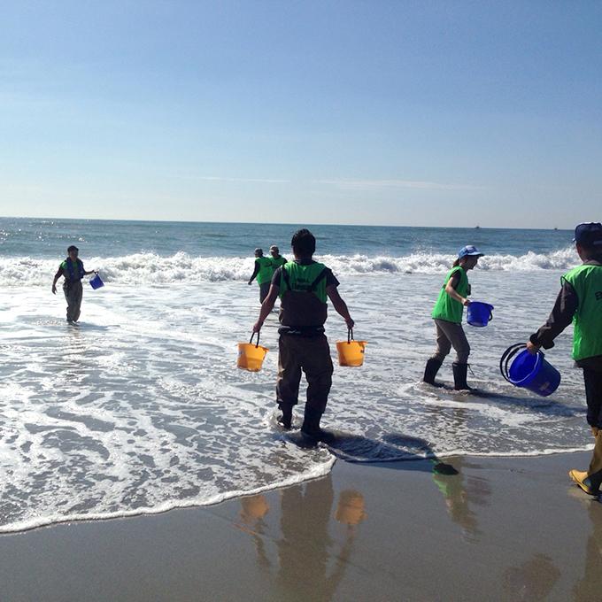 日本釣振興会 愛知県支部主催「水辺感謝の日 一斉清掃」参加レポート
