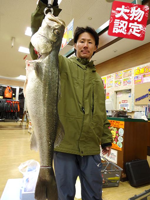 161214oomono_miyajima