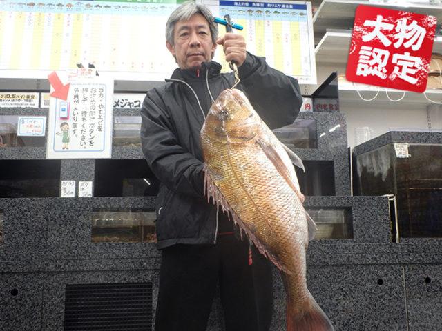170325oomono_shibata