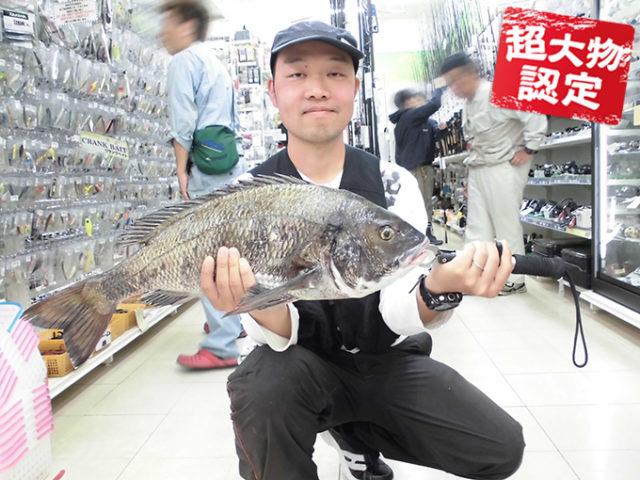 170527oomono_shikii1