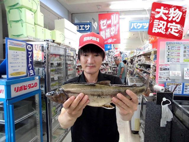 170618oomono_nakashima