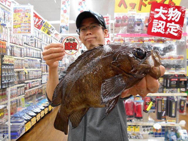 171027oomono_sakai