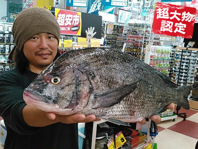 180720oomono_sakai