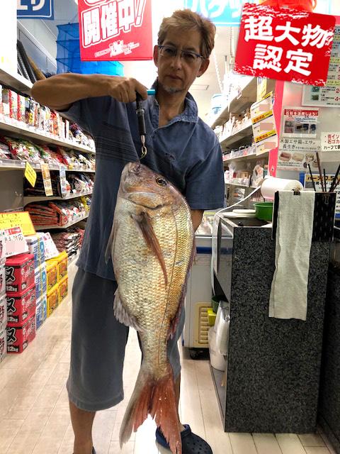 180731oomono_hirano1
