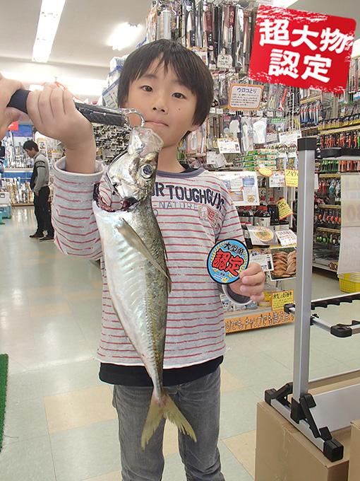 181028oomono_ogita1