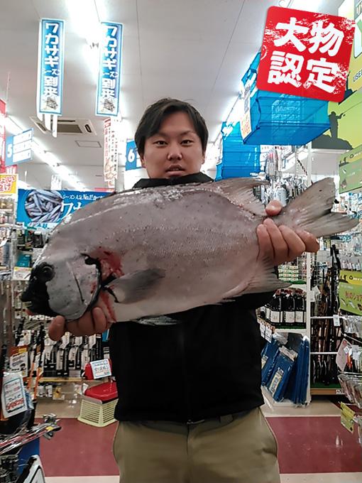181124oomono_motoyama