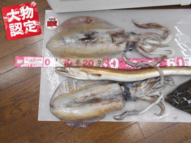 190601oomono_nishikawa