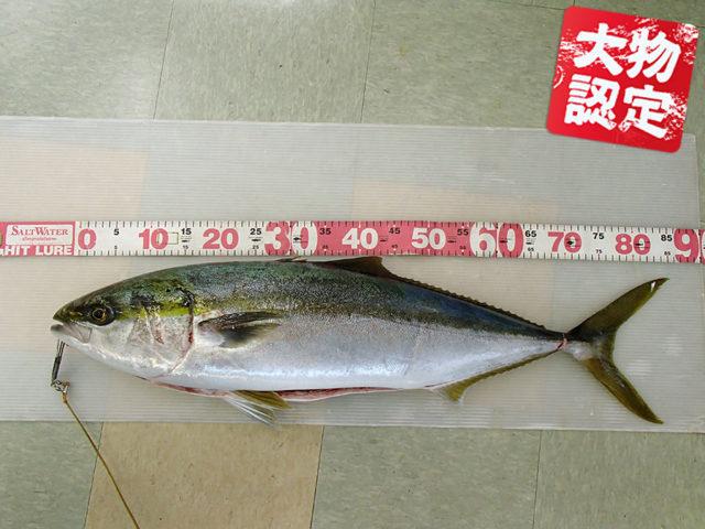 200225oomono_okyakusama