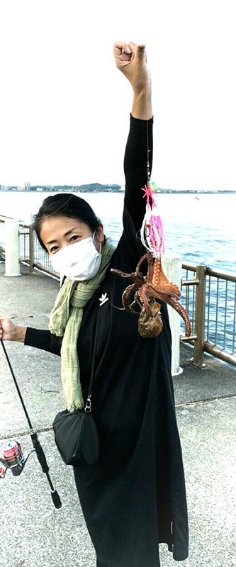 200627repo_himehotaru