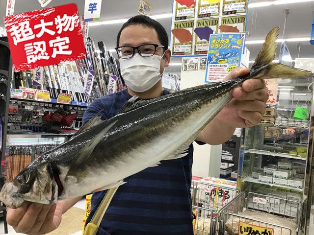 200718oomono_fujita1