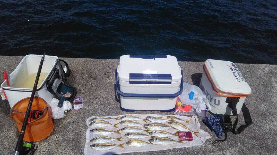 志摩 安乗漁港のアジ釣り