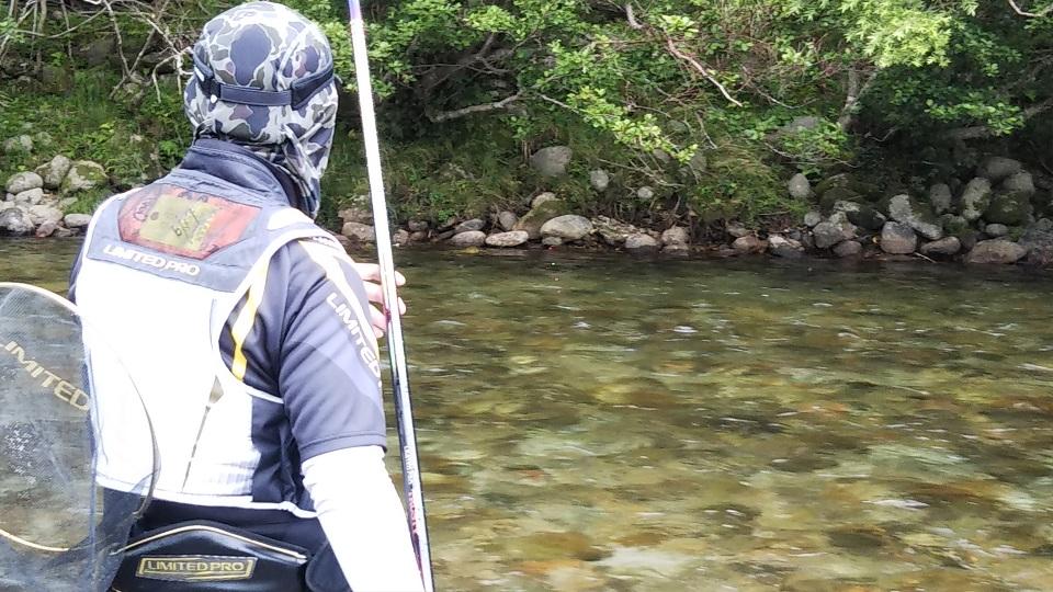 大千瀬川で鮎釣り
